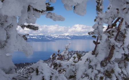 Lake Tahoe in Winter - snow, winter, tahoe, clouds, mountains, trees, nature, lake