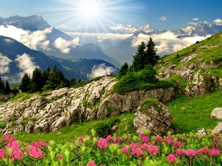 Mountain paradise - hills, rocks, sun, grass, greenery, sky, freshness, mountain, paradise, rays, slope, flowers