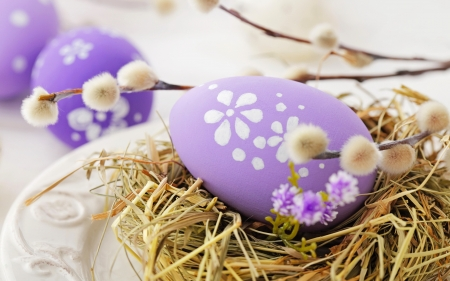 Easter eggs - pretty, holiday, beautiful, easter, straw, still life, nest, eggs, plate