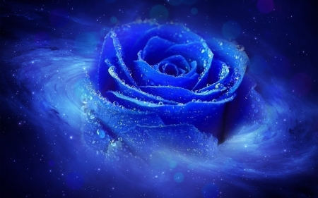 blue rose - 3d, rose, abstract, blue