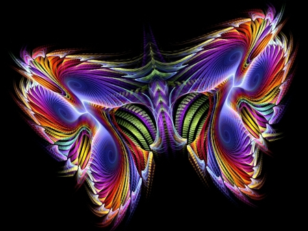 butterfly - colorful, beauty, butterfly, abstract