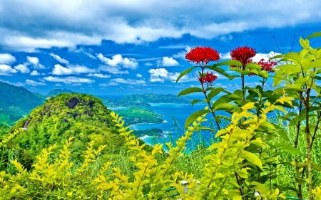Amazing Green Landscape - green, mountains, flowers, nature, clouds, sky, landscape