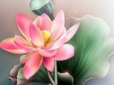 Summer Pink - lotus, love four seasons, paintings, flowers, water lilies, summer, nature