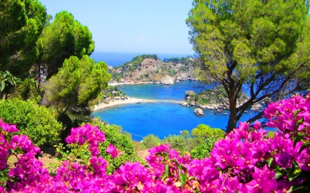 Coast of Sicily, Italy - Flowers, Sea, Nature, Oceans, Spring, Italy, Coast
