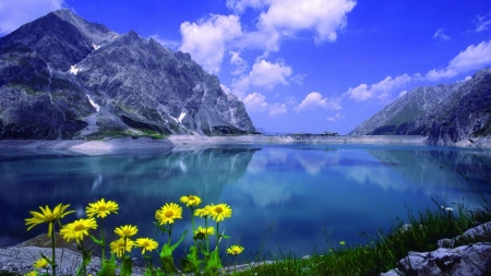 Calmness Lake - rocks, shore, calmness, clouds, lake, mirrored, mountains, peaks, flowers, nature, blue