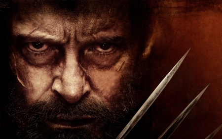 Logan 4k - 4k, movies, wolverine, Logan