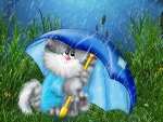 Keeping Kitty Dry