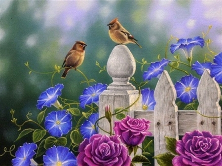 On the Fence Post - Cedar Waxwing's - fence, love four seasons, birds, spring, roses, paintings, summer, flowers, garden, nature, animals