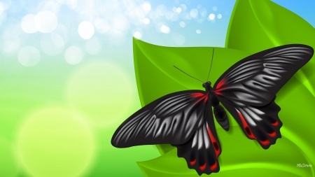 Summer's Bright Butterfly - bokeh, leaves, Firefox Persona theme, green, spring, summer, butterfly