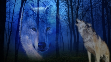Spirit Of The American Wolf Other Animals Background
