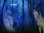 Spirit of the American Wolf