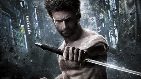 The Avengers (2012) - wolverine, movie, comics, man, fantasy, Hugh Jackman, the avengers, sword, actor