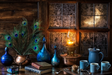 Moonlit Evening - frosty, copper, books, moon, wood, coffee, windows, bottles, cauldron, coffee decanter, lamp, decanters, oil lamp, flame, frost, table, decanter, still life, feathers, tray, spoons, coffee pot, peacock feathers, cups, window