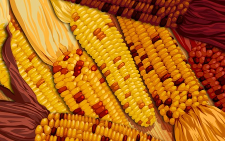 Thanksgiving Harvest - autumn, harvest, corn, thanksgiving, art, fall