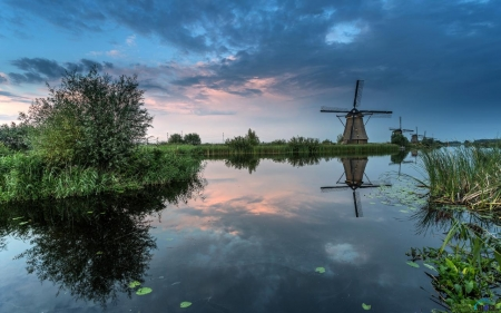 Pretty Nature - water, windmills, river, Dutch, canals, pretty, grass, nature, Netherlands
