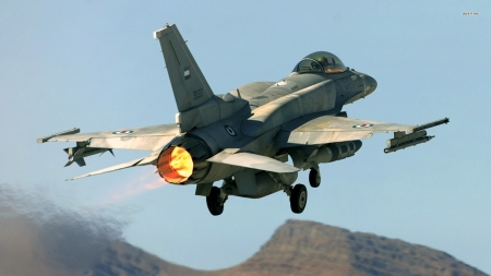 General Dynamics F-16 Fighting Falcon - Military & Aircraft