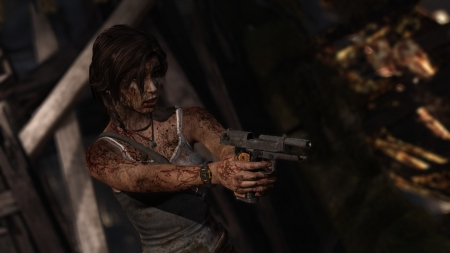 Tomb Raider - 2013, gaming, Lara Croft, Tomb Raider, video game, game