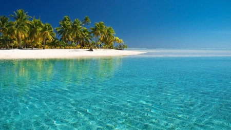beautiful beach - beach, vacation, water, trees, blue