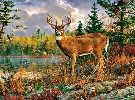 Tranquil Moment - Deer F1C - art, buck, ducks, beautiful, illustration, lake, artwork, deer, animal, doe, water, painting, wide screen, wildlife, nature