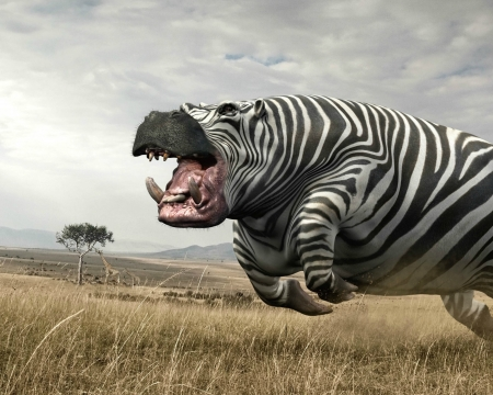 hippozebra - safri, black, creative, animal, fantasy, hippozebra, running, funny, white