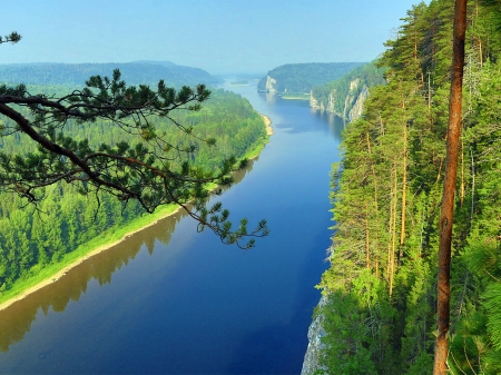 River Both side Forest - spruce, sky, forest, trees, river, nature