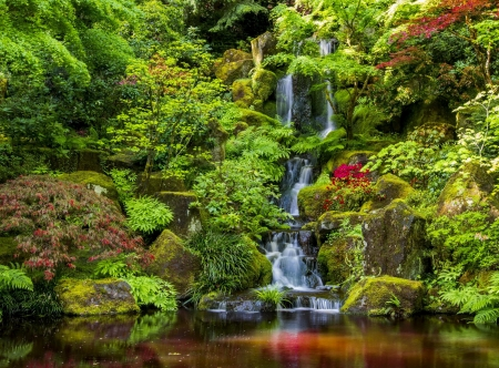 Small forest cascades - forest, lovely, greenery, beautiful, park, trees, small, pond, cascades, water, serenity, plants, waterfall