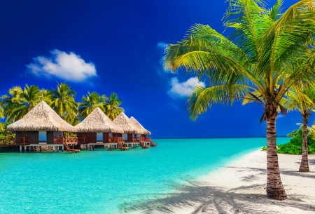 Maldives - rest, vacation, exotic, lovely, ocean, villa, sky, Maldeves, palms, sea, beach, paradise, summer, tropics, blue