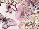 Butterflies & Orchids
