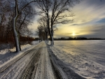 Soft Sunlight over Winter Road