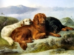 Retrievers in a Mountainous Landscape- Dogs