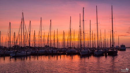 Sunset at the Harbor - Sea, Sunset, Boats, Harbor