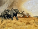 Elephants Moving Before a Fire