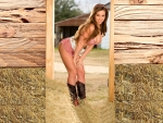 Hay In The Barn. .
