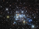 The Massive Stars in Westerlund 1