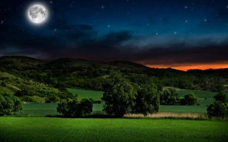 Moonlit night in the countryside - image, grass, orange, sunset, clouds, countryside, afternoon, nice, splendor, mounts, 1440x900, moonlit, black, sky, country, trees, panorama, sunrays, cool, mountains, awesome, white, landscape, beautiful, picture, moon, green, fields, blue, night, amazing, colors, beautiful night, plants, nature, natural