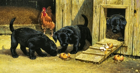Mischief Makers - Puppies F - rooster, art, beautiful, pets, illustration, artwork, canine, animal, broken egg, puppies, painting, wide screen, labradors, dogs