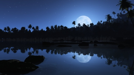 Beautiful blue night - image, stunning, blue dream, collors, magic nights, nice, calm, outstanding, bright, shadows, silhouettes, black, sky, trees, panorama, water, cool, awesome, high definitiom, white, landscape, breathtaking, picture, photography, moon, stone, mirror, blue, night, photo, amazing, reflex, quality, view, lake, nature, reflections, hidden
