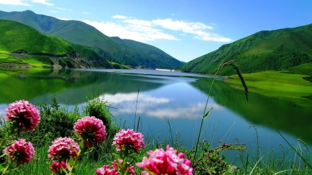 Summer Serenity - greenery, lake, mirrored, mountain, calm, summer, flowers, nature, reflection