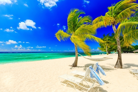 Ocean breeze - rest, vacation, exotic, lovely, ocean, wind, breeze, sky, palms, sea, beach, paradise, summer, tropics, sands, blue