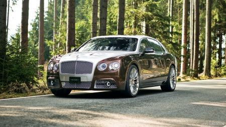 2014 Mansory Bentley Flying Spur - Tuned, Car, Luxury, Flying, Bentley, Mansory, Tuning, Spur