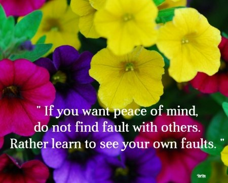 Peace - quotes, words, flowers, colors, nature, peace