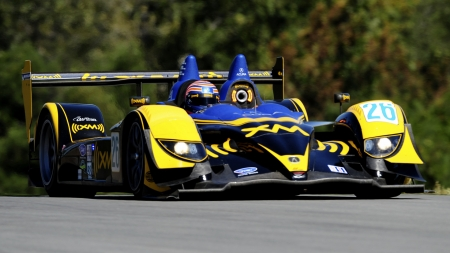2008 Acura ARX 01B - Car, 01B, Sports, Acura, Racing, ARX