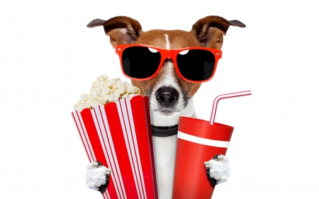 Ready for the movie - popcorn, red, movie, paw, caine, creative, animal, sunglasses, fantasy, jack russell terrier, drink, funny, white, dog