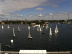Sail race in Stockholm