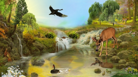 Wild Life - forest, fawn, ducks, pool, wild life, deer, wild cat, geese, Firefox Persona theme, falls