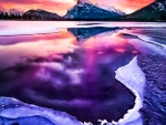 Purple sky reflections