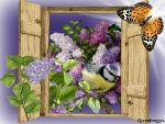 LITTLE BIRD WITH LILACS