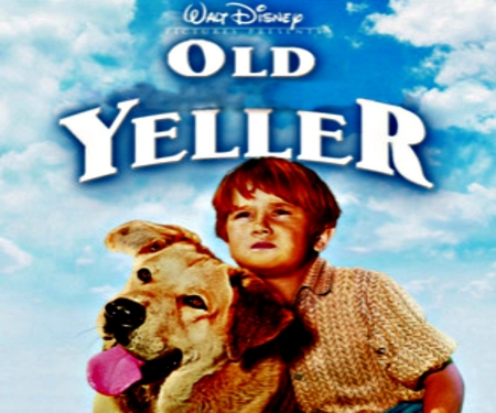Old Yeller - Redhead, Entertainment, Yeller, Movies, Boy, Yellow, Old, Dog