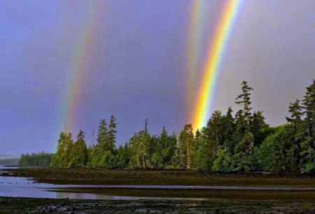 Rainbows - Trees, Colorful, Nature, Rainbows, Three, Land, Water
