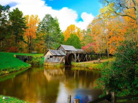 Mill on the River and Colorful Autumn Forest - mill, forest, trees, river, nature, autumn